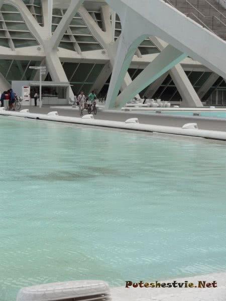 Бассейн в Городе Наук и Искусств Валенсии