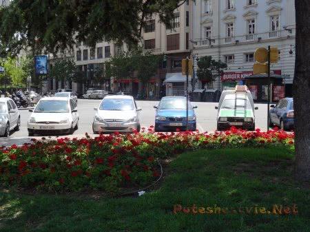 Ухоженные клумбы на площади Валенсии