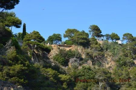 Зеленые скалы в Ллорет-де-Мар