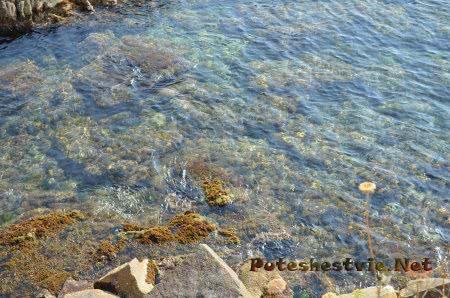 Красивое побережье Испании в Ллорет-де-Мар