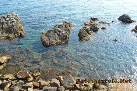 Живописные участки побережья в Ллорет-де-Мар