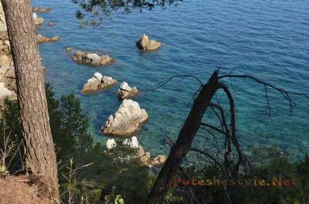 Живописные скалы в морской воде в Ллорет-де-Мар