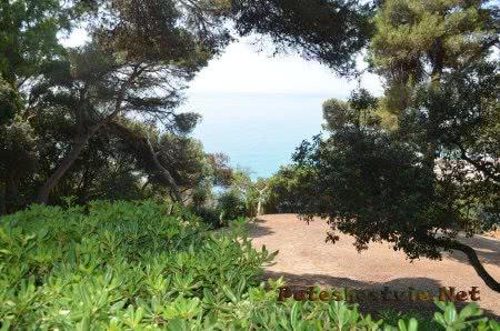 Море и зелень садов в Испании