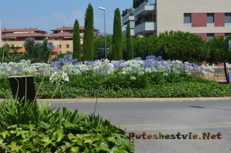 Ухоженные улицы в Ллорет-де-Мар