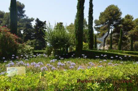 Что растет в Саду Святой Клотильды в Ллорет-де-Мар