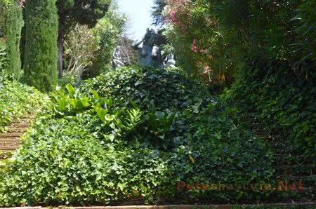 Буйная зелень Сада Святой Клотильды