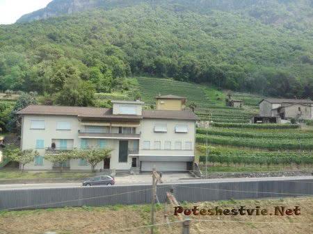 Виноградники в Швейцарии