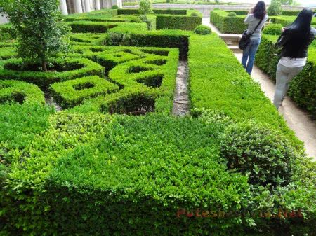Сад Эскориала