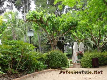 Бутик-отель «Ла-Боэлья» в Испании
