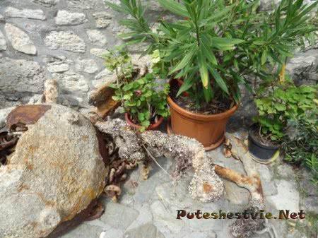 Древний якорь найденный в водах у Несебра