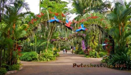 Самые интересные парки мира