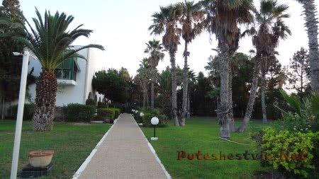 Идеальная чистота в саду отеля Эль Муради Бич