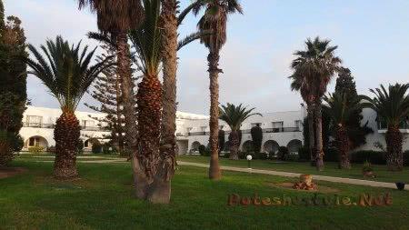 Уютная территория сада в отеле Эль Муради Бич Хаммамет