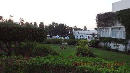 Зелень территории отеля в Хаммамете