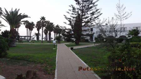 Вид на сад и море вдалеке