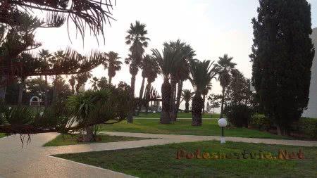 Много зелени на территории отеля Эль Муради Бич