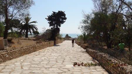 Турист идет к римским термам Карфагена