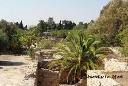 Руины Римских терм в Карфагене