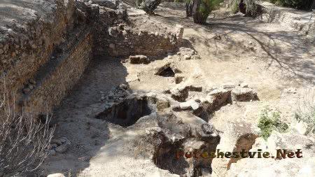 Вскрытые могилы в Археологическом парке в Карфагене
