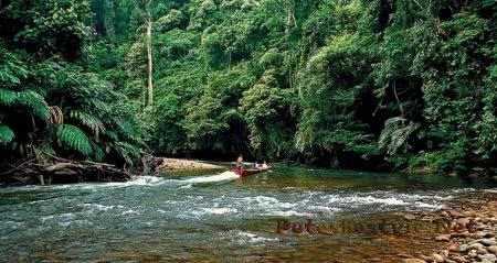 экотуризм в Брунее