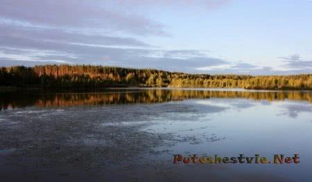 Плавающий остров озера Клюквенник Курская область