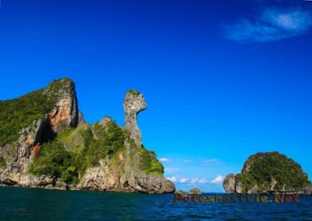 Экскурсия-приключение на необитаемом острове