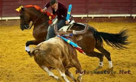 Португальские бои быков