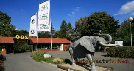 Зоопарк в городе Острава