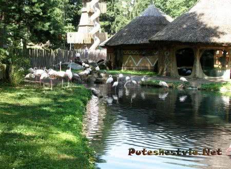 Зоопарк в городе Йиглаве