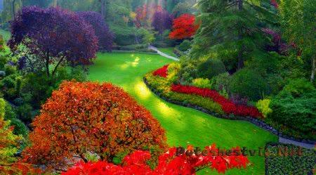 Затерянные сады Хелигана в Великобритании