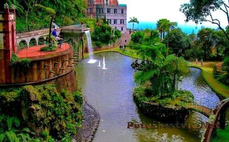 Тропический сад Монте
