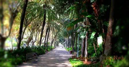 Городской парк Малаги