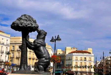 Памятник «Медведица с земляничным деревом»