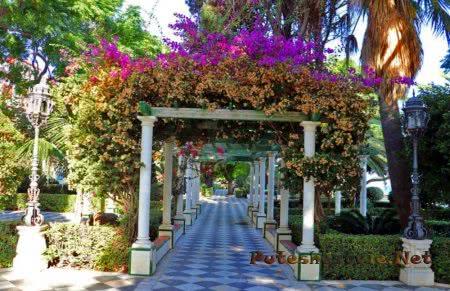 Сады Аламеда Аподака