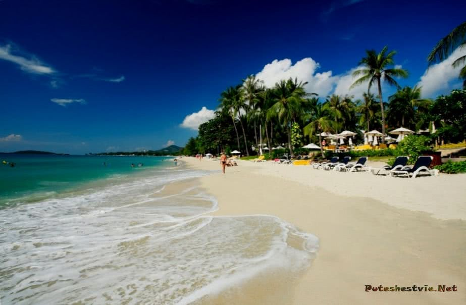 Фото с нудистских пляжей азии фото 435-202
